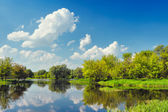 Beautiful landscape wallpaper with flood waters of Narew river, Poland.