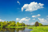 Landscape with flood waters of Narew river, Poland. Beautiful wallpaper.