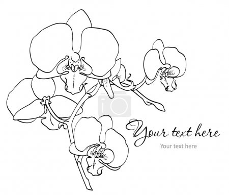 Illustration for Vector branch of beautiful orchids on white background - Royalty Free Image
