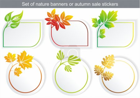 Illustration for Vector natural stickers with different leaf - Royalty Free Image