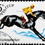 Постер, плакат: Postal stamp The rider on a horse 1982