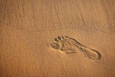 Photo pour Empreinte unique dans le sable humide d'une plage - image libre de droit