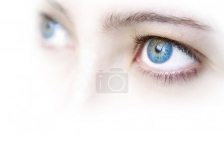 Photo for Close up view of a young woman's beautiful blue eyes - Royalty Free Image