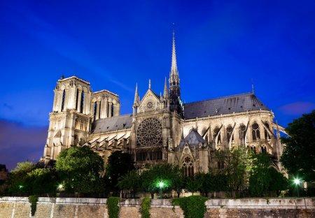Photo pour Cathédrale Notre Dame de Paris France la nuit - image libre de droit