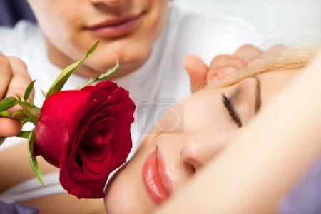 Morning couple rose