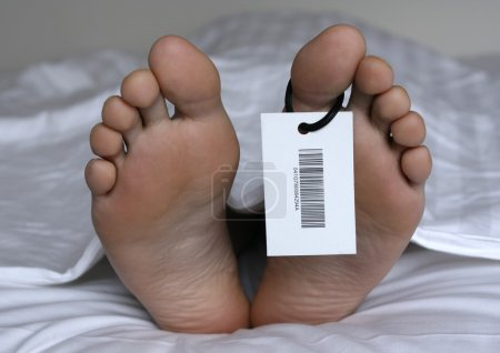 Human feet with toe tag...