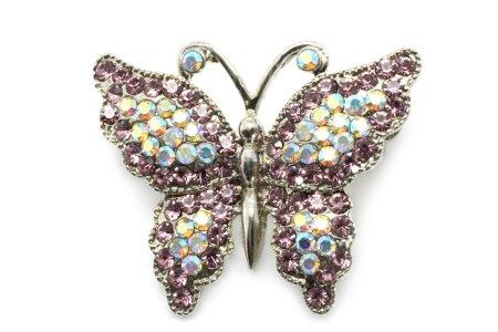 Photo pour Broche papillon blanc a fond - image libre de droit
