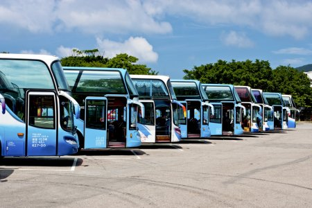 Row of tourist buses