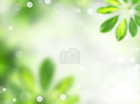 Spring natural background