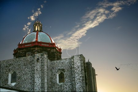 San Francisco Church Dome Pigeons Sunset San Miguel Mexico