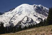 Mount Rainier Sunrise Picnic Time