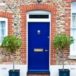 Nice blue front door...