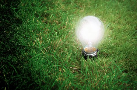 Photo pour Light bulb glowing in the grass at night - image libre de droit
