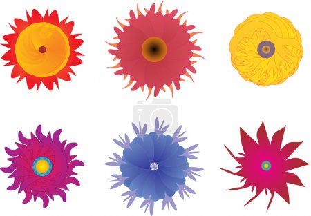 Six Different Abstract Flowers