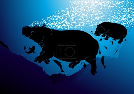 Cute swimming hippopotamus