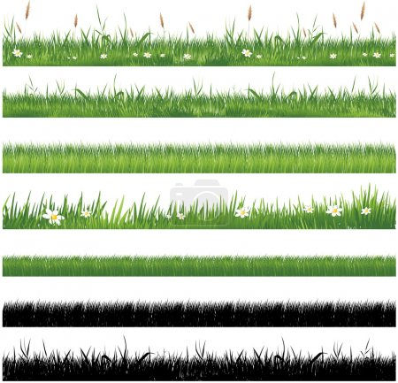 Illustration for Green grass collection - Royalty Free Image