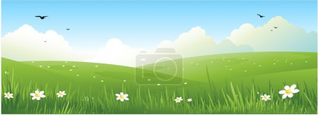 Illustration for Nature summer field with grass and flowers - Royalty Free Image