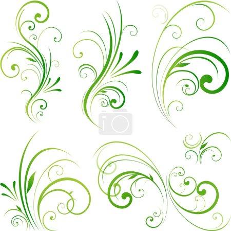 Nature floral ornament