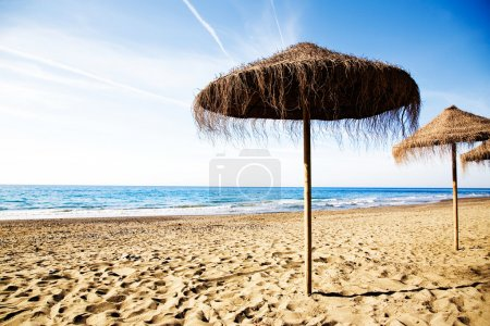 Photo for Empty beach in the beautiful sunny morning - Royalty Free Image