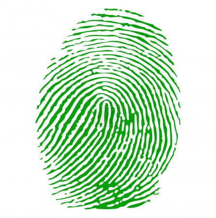 Illustration for Green fingerprint vector - Royalty Free Image