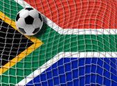 Football south africa vector