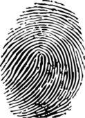 Vector of a finger print