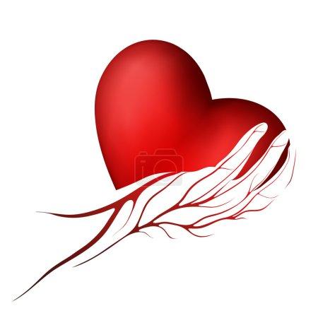 Illustration pour Coeur rouge dans une main avec logo ou l'icône de veines - image libre de droit