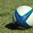 A white, green and blue used real Rugby ball lying...