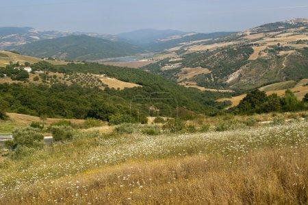 Landscape in Basilicata (Italy) near Acerenza at summer