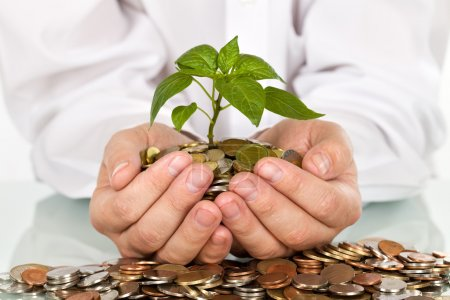 Making money and good investments concept