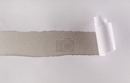 White paper torn revealing gray cardboard layer