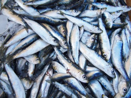 Sardines on a stall