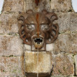 Medieval wall fountain with gargoyle spitting wate...