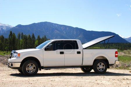 White Pick-up Truck