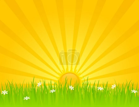 Illustration for Sunny summer day with grass and daisies. EPS 8 RGB with global colors vector illustration. - Royalty Free Image