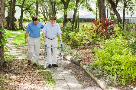 Photo for Adult son helping his father use a walker in the park. - Royalty Free Image