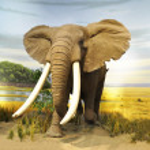 Stuffed African Elephant...