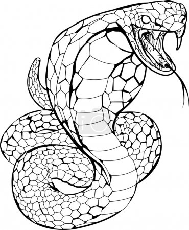 Cobra snake illustration