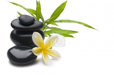Foto de Fondo Spa Bodegón con flores, bambú y masaje de piedras - Imagen libre de derechos