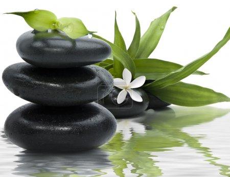 Photo pour Spa nature morte avec des pierres noires et des feuilles de bambou dans l'eau - image libre de droit