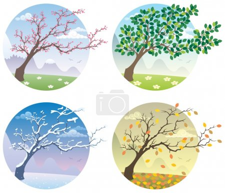 Illustration for Cartoon illustration of a tree during the four seasons. No transparency used. Basic (linear) gradients. - Royalty Free Image