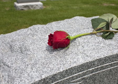A single rose placed on a grave...