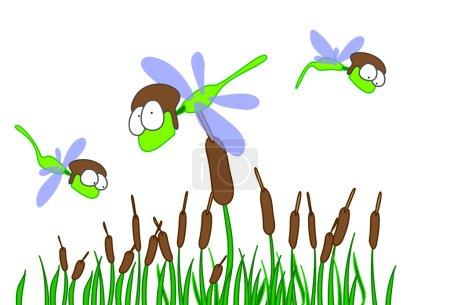 """Dragonfly """"libelula"""""""