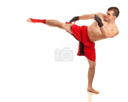Mixed martial artist. Studio shot over white.