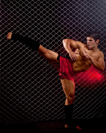 Photo for Mixed martial artist posed in front of chain link - Royalty Free Image