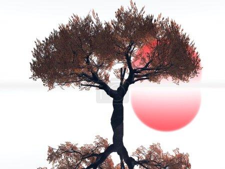 Photo pour Paysage hivernal - image libre de droit