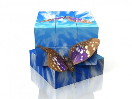 Photo for Butterflies flying from a 3D box - Royalty Free Image