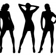 Silhouettes of sexy women...