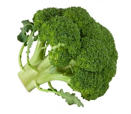 Photo for Broccoli isolated on white - Royalty Free Image